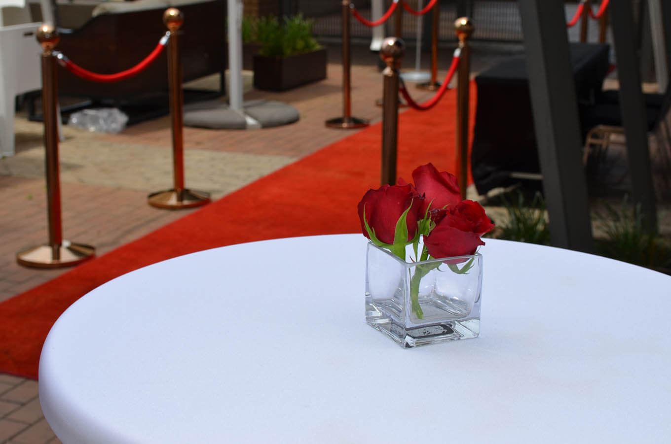 Focus Rooms Events Venue on the red carpet