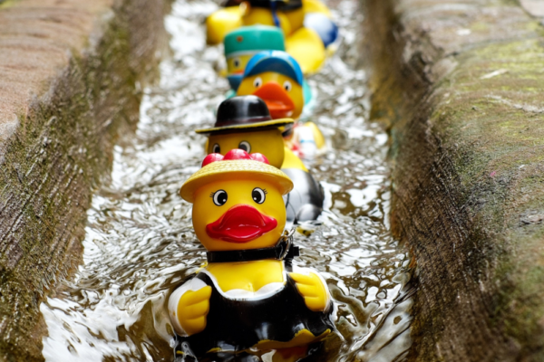 Get Your Event Ducks in a Row Header | Focus Rooms | Blog